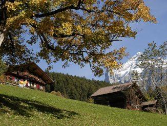 Schweiz - et land med tilflyttere